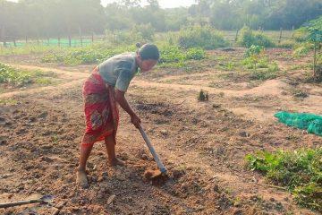 Rhi Gardening