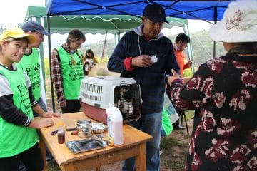 Dog Rescue Peru