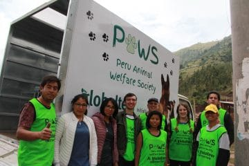 Protect the dogs in Peru