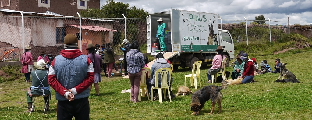 free healthcare in mobile clinic for Cusco dogs