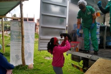 NGO Treating dogs for free with mobile clinic Cusco Peru
