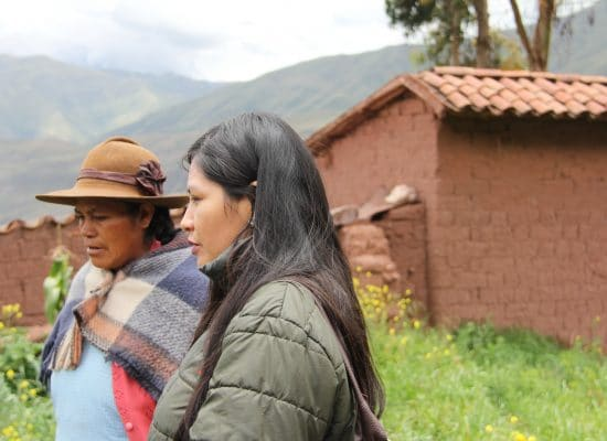 Luz, programme coordinator