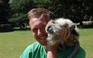 Volunteer with howler monkeys in Argentina
