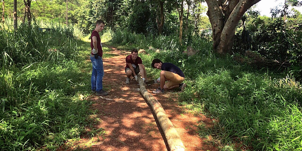 Volunteer with animals abroad in Laos