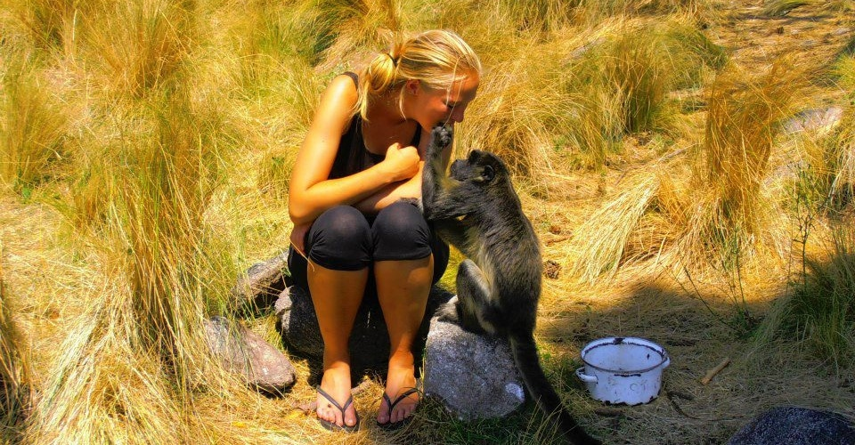 Volunteer at the Argentina Howler Monkey Project