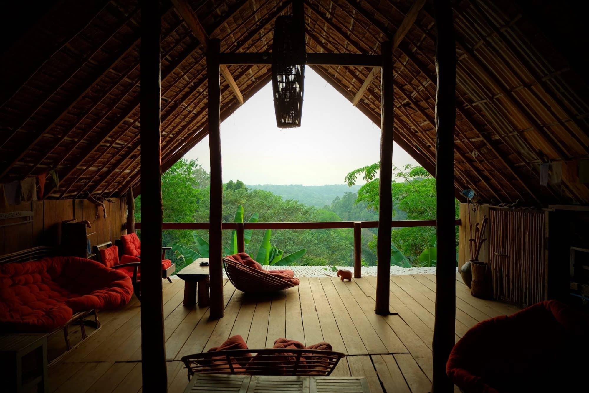 Jungle view at the Elephant Sanctuary