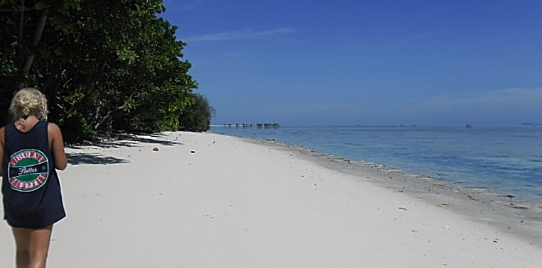 Borneo Marine and Coral Conservation project