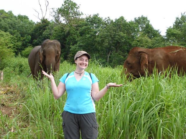 Volunteer at the elephant sanctuary