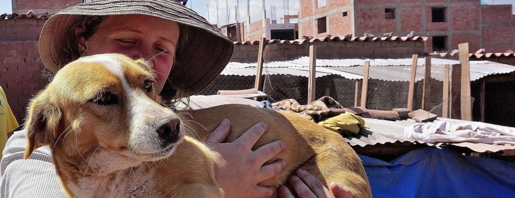 Globalteer staff with one of the dogs at Peru Dog Rescue Project