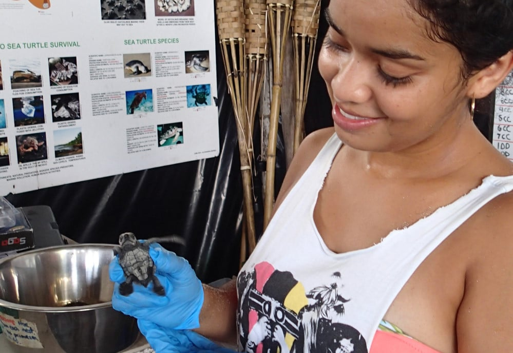 Volunteer at the Costa Rica Sea Turtle Project
