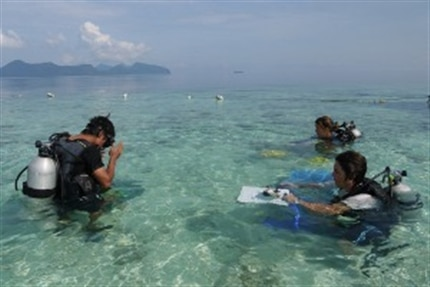 Volunteers getting ready to scuba dive at Borneo Marine Conservation Project