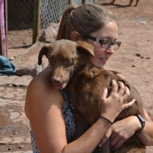 Dog Shelter in Cusco