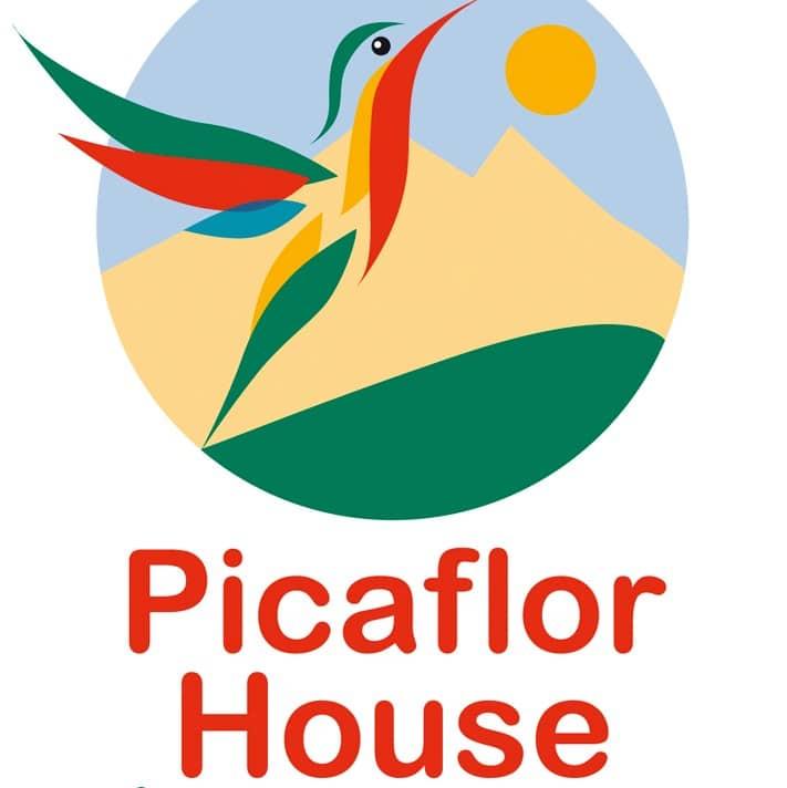 Picaflor Logo placeholder