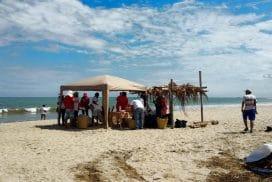 Peru Marine beach