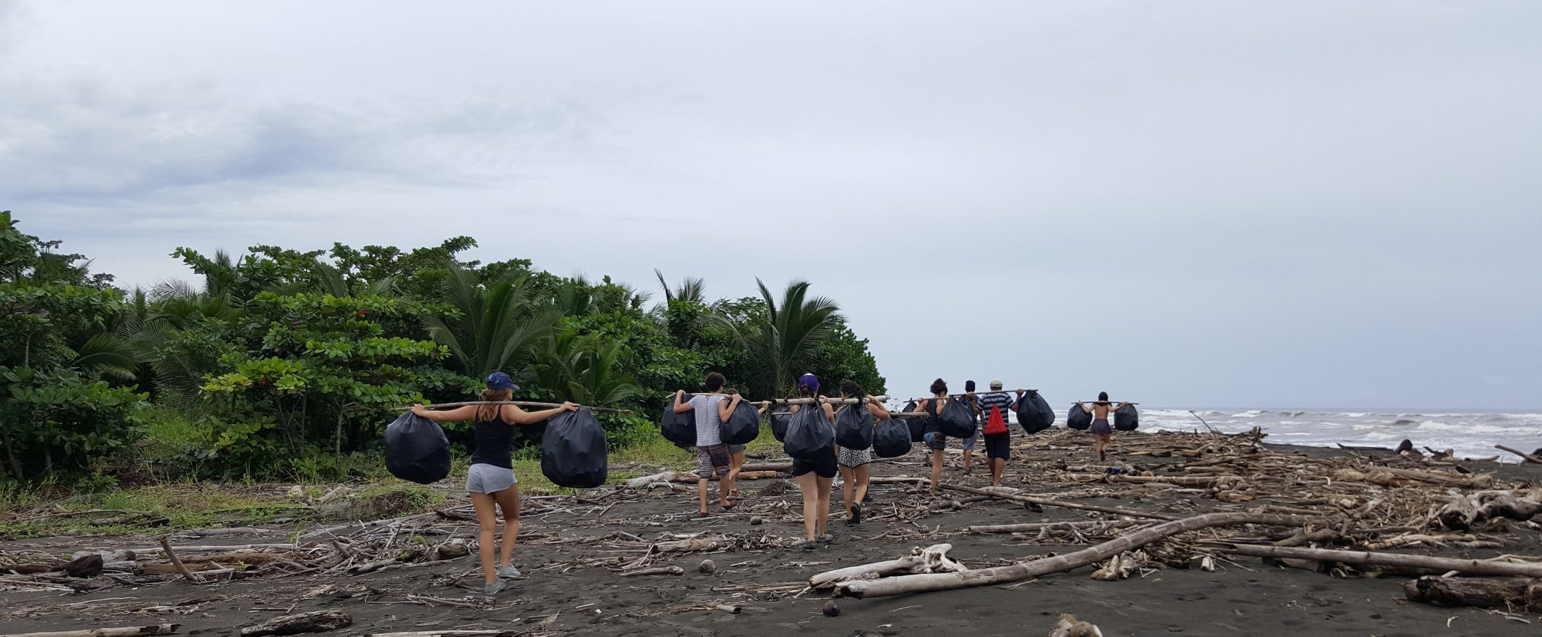 Volunteers Cleaning up Beaches at Costa Rica Sea Turtle Sanctuary