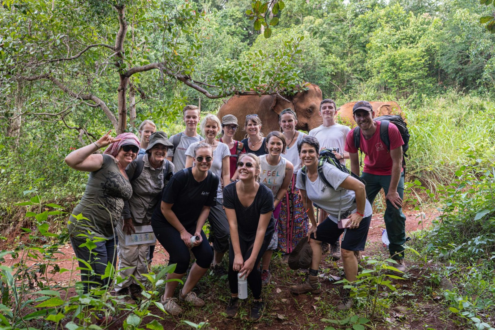 Volunteer Group at the Elephant Sanctuary in Cambodia