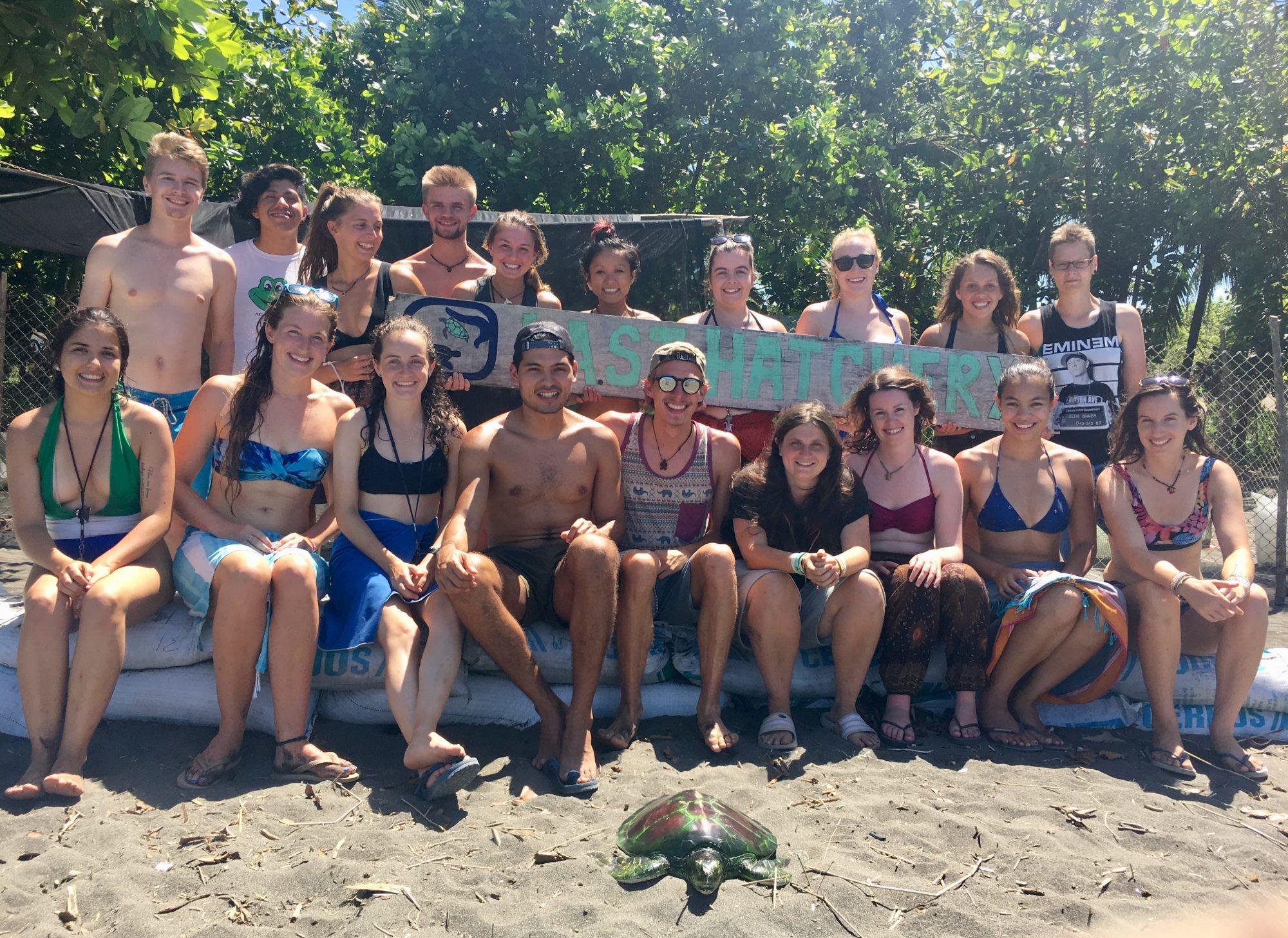 Volunteering on the Costa Rica's Caribbean Coast to Save Sea Turtles