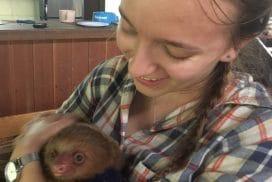 Help save Rescued Wildlife