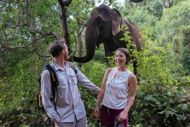 Various volunteer options to explore on your gap year