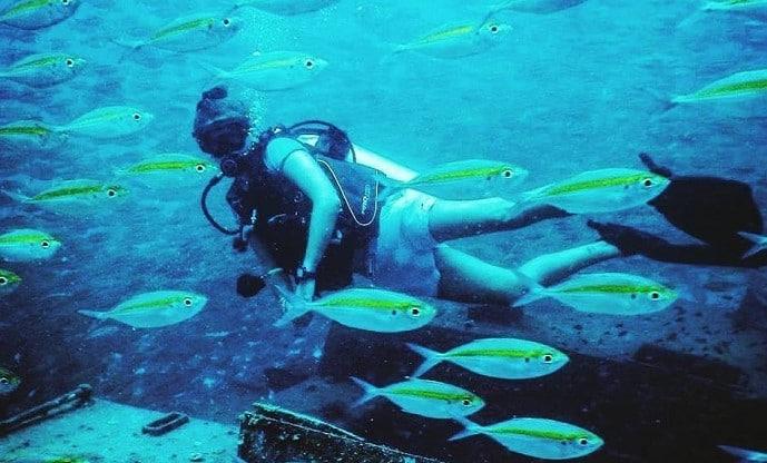 Volunteer Marine Conservation Malaysia