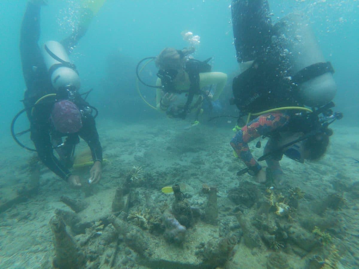 Volunteer - diving