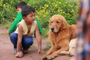 kid and dog Cusco Peru