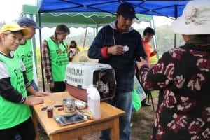 treating animals in Cusco Peru