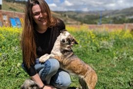 volunteer with dogs