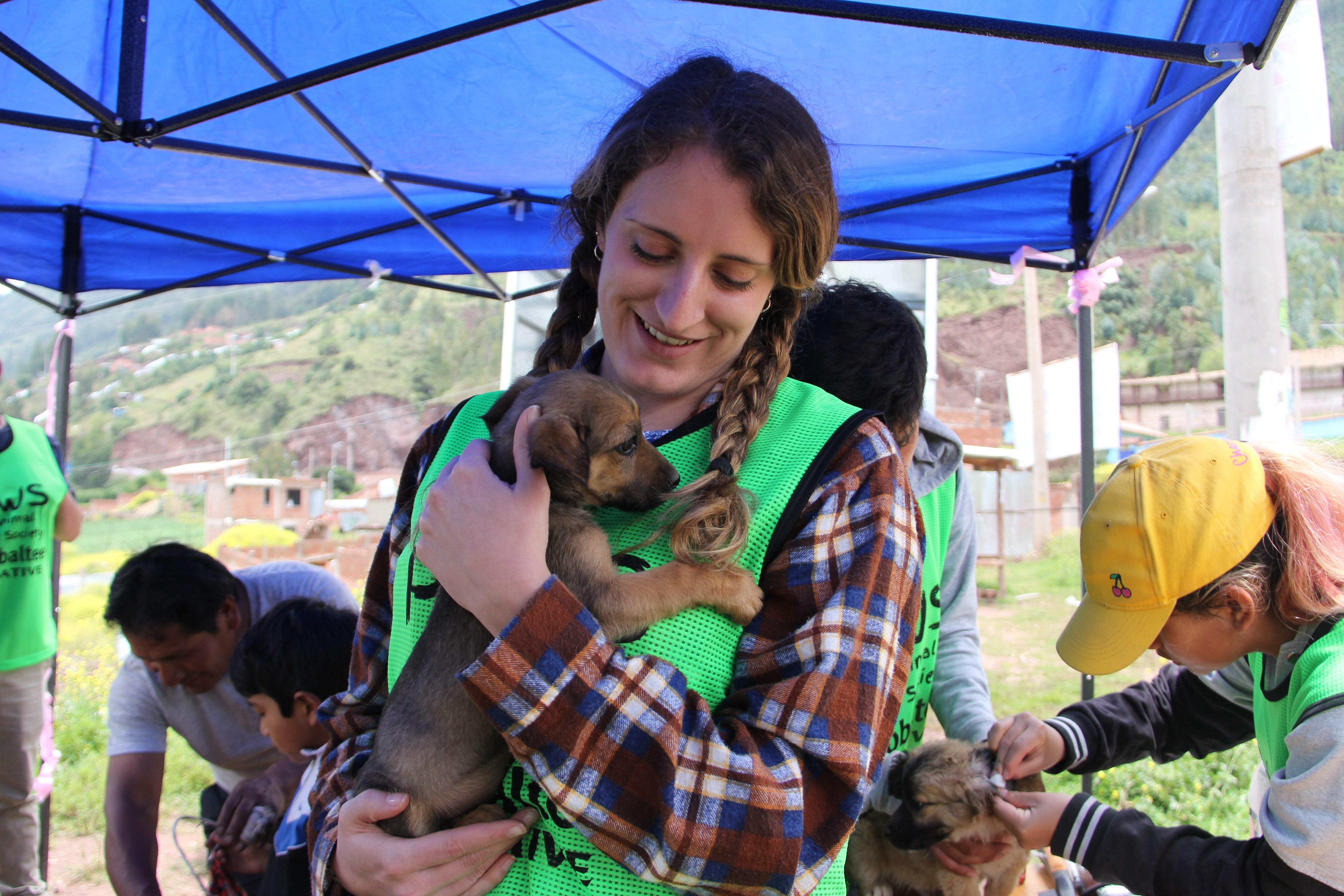 PAWS Animal Welfare Campaign