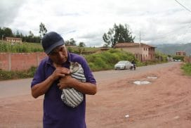 A man brings his kitten to the animal welfare clinic.