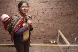 Rural Peruvian women running their own business, Pinagua